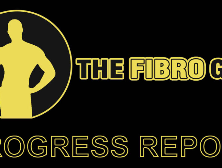 The Fibro Guy Progress Report