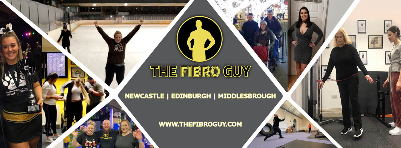 The Fibro Guy Home Banner